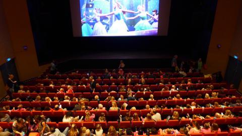 Hotel Theater Figi